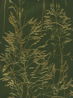 Dynasty Foils Wallpaper by Brewster. Find this pattern at AmericanBlinds.com #gold #green