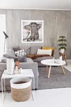 Love how the walls in this living room look like diy concrete! Silvery serene and I love the elephant picture on the wall too!