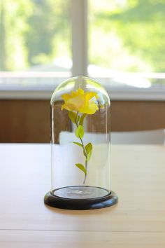 DIY, would be great in a nursery or little girl's room! from The House That Lars Built
