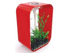 Biorb Life 60 Aquarium in Red, also available in Black or White and 45 or 30 litre sizes too
