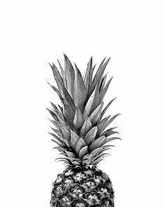 New Fashion Wallpaper Backgrounds Wallpapers 25 Ideas Wall Prints, Poster Prints, Art Print, Top Art Schools, Desenio Posters, Pineapple Top, Pineapple Print, Pineapple Clipart, Images Murales