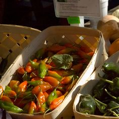 peppers are a must for a foodie's garden Also has links to recipes for pepper infused oil and other ideas