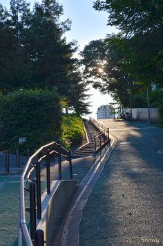 Perimeter of Hinokicho Park Aesthetic Japan, Japanese Aesthetic, City Aesthetic, Aesthetic Anime, Urban Photography, Street Photography, Japan Street, Anime Scenery, Photo Reference
