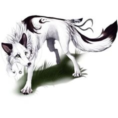 Anime Wolves ❤ liked on Polyvore featuring animals and art