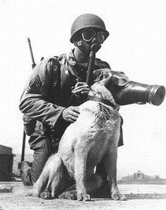 German solider and his dog