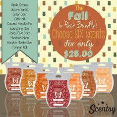 Pick your 6 for 25$ plus tax/shipping http://jennyhermel5.scentsy.us
