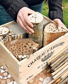to make a solitary bee hotel How to make a solitary bee hotel - you could do this idea several different ways.(use a bird feeder etc.)How to make a solitary bee hotel - you could do this idea several different ways.(use a bird feeder etc. Bug Hotel, Potager Bio, Mason Bees, Bee House, Bee Friendly, Birds And The Bees, Beneficial Insects, Save The Bees, Bees Knees