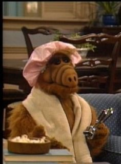 ALF on Pinterest | TV shows, Aliens and Arc Welding