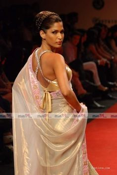 beautiful blouse and sari