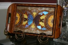 Real Butterfly Art Collage in Antique Hardwood Tray w Detailed Wood Inlay   eBay