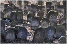 Parte de la historia perdida de los Judíos se esconde a plena vista en Polonia | Internacionales | Diario Judío México