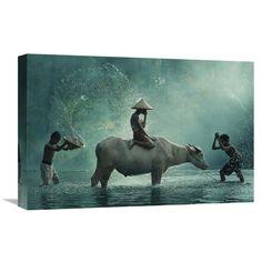 Global Gallery Vichaya 'Water Buffalo' Stretched Canvas Artwork