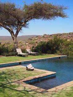 Must stay: Bushmans Kloof Wilderness Reserve   Western Cape   South-Africa   Safari   Resort   bushmans kloof zwembad
