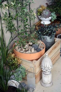 Use cheap, terracotta/plain containers inside of other inexpensive crates and intermingle