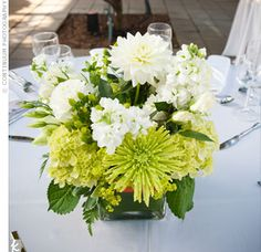 Square Vase Centerpieces    Since the conservatory gardens are so lush, the couple chose simple arrangements of ivory and green hydrangeas and roses in square glass vases.