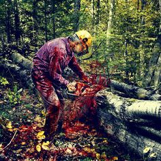 Clearly, plants can communicate. But does that mean they can feel pain? It's a troubling scenario for salad lovers ... But imagine if they reacted like humans to a cut. Woodsmen would become butchers and we would think differently about how we interacted with our environment.