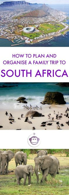 How To Plan and Organise A Family Trip To South Africa | South Africa | Road Trip | Garden Route | Cape Town | Kynsna | Family Travel | Travel With Kids | Travel Inspiration | Travel Planning