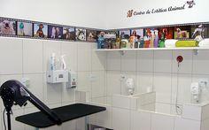 Clínica Veterinária: Banho e Tosa
