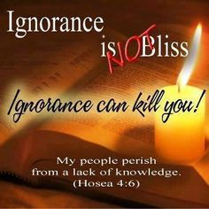 Hosea 4:6 My people are destroyed for lack of knowledge: because thou hast rejected knowledge, I will also reject thee, that thou shalt be no priest to me: seeing thou hast forgotten the law of thy God, I will also forget thy children.  www.magnificatmealmovement.com