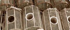 Survival Tip: Making Fish Traps