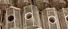 making fish traps