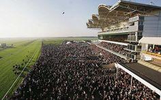 Newmarket Racecourse, Suffolk, England