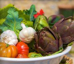 Vacanza in agriturismo biologico in Toscana  Tuscany organic farm holidays