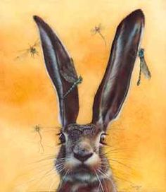 A Bug in Your Ear - Eileen Sorg, What could be better than a bunny and Dragonflies!!!!