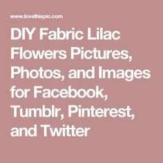 DIY Fabric Lilac Flowers Pictures, Photos, and Images for Facebook, Tumblr, Pinterest, and Twitter