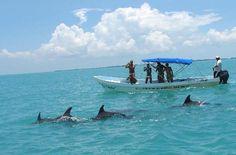 Una de las excursiones que se realiza para conocer algunas especies de fauna protegidas