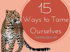 15 Ways to Tame Ourselves http://www.hunteryoga.com/blog/15-ways-to-tame-overindulgence/