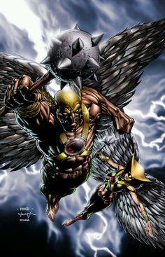 Hawkman and Hawkgirl by David Finch #hawkman #hawkgirl #davidfinch