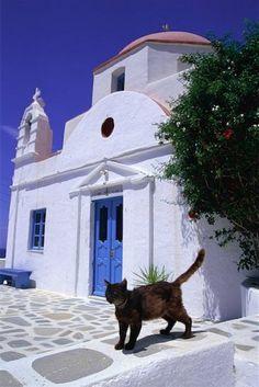 ~ Mykonos, Greece ~ loved by www.greekweddings.com