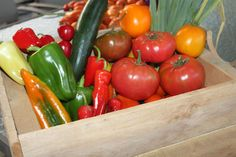 Discover the basics to saving seeds from your vegetable garden!