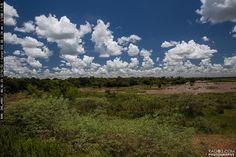 Paraguay Landscape