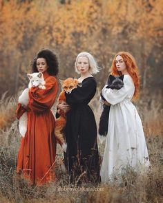 Moscow-based photographer Anastasiya Dobrovolskaya captures the diverse color of foxes in her stunning image, Autumn Equinox. Moscow-based photographer Anastasiya Dobrovolskaya captures the diverse color of foxes in her stunning image,
