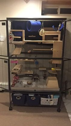 My chinchilla cage.we call it the chinchilla mansion! My chinchilla cage.we call it the chinchilla Ferret Toys, Pet Ferret, Rat Toys, Pet Rats, Pet Rat Cages, Ferret Cage, Chinchillas, Chinchilla Baby, Degu Cage