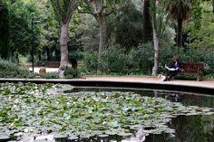 SARRIÀ – SANT GERVASI: CICLE LES SENSACIONS DEL PAS DE L'ANY: L'art de visitar un jardí: el Turó Park | La Fàbrica del Sol