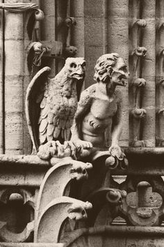 Gargoyles Notre Dame Cathedral - doesn't the gargoyle on the right look a bit like Matthew McConaughey?