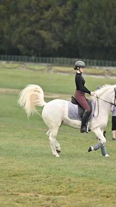 Paris Travel, Equestrian, Horses, Animals, Equestrian Fashion, Beautiful Horses, Horseback Riding, Nice Asses, Animales