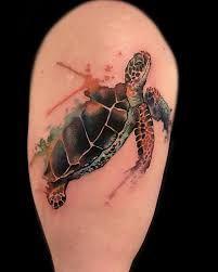 Bildergebnis für tattoo turtles