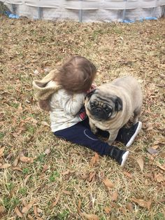Really, pugs are good with kids!