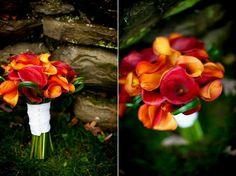 I adore fall colors. My bouquet was 2/3 mango cala lilies and 1/3 burgundy. My girls dresses were a dark wine/burgundy and their bouquets had additional fall colors and types of flowers. Groom had mango cala boutineer, everyone else, burgundy.  Photo by Alexis Stein Photography of Long Island   www.alexissteinphoto.com  Bouquet:  http://www.rootsflowersandtreasures.net/