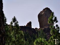 El reflejo de mi mirada: La Rana y El Roque Nublo
