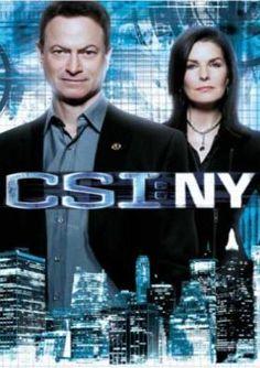 CSI NY'