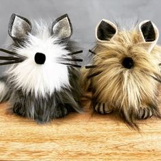 Biker Gnomes, Gnome Hat, Pet Dogs, Pets, Dog Crafts, Cat Decor, Shaggy, Cat Art, Cat Lovers