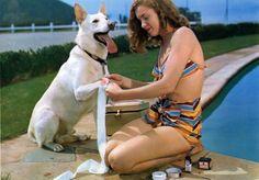 Marilyn Monroe was a huge Dog Lover