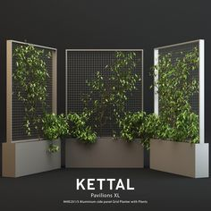 Kettal Pavilions XL Planter With Plants asset bark botanical, formats MAX, OBJ, ready for animation and other projects Garden Spaces, Interior Plant Pots, Vertical Garden Wall, Wall Climbing Plants, Interior Plants, Interior Design Presentation, Backyard Landscaping Designs, Plant Decor, House Plants Decor