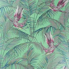 Matthew Williamson Sunbird Wallpaper - W6543-03 (130 CAD) ❤ liked on Polyvore featuring home, home decor, wallpaper, green, green leaves wallpaper, tropical home decor, green screen, pattern wallpaper and green home decor