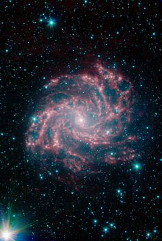 """NGC 6946, or """"The Fireworks Galaxy,"""" is a neighbor of our Milky Way galaxy. It is located approximately 10 million light-years away in Cepheus."""